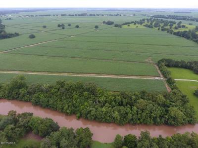 Iberia Parish Farm For Sale: Daspit Road