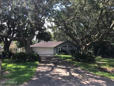 New Iberia Single Family Home For Sale: 4718 Lafitte Street