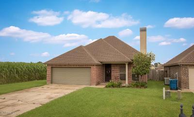 Legend Creek Single Family Home For Sale: 110 Zenda Street