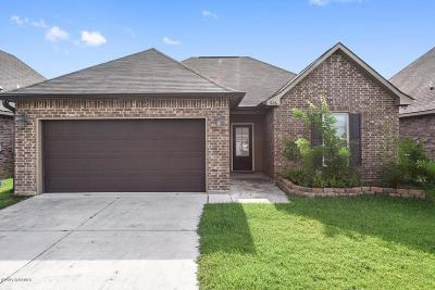 Carencro Single Family Home Active/Contingent: 606 Magnolia Knee Drive