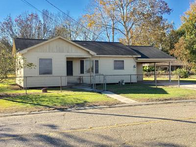 Breaux Bridge Single Family Home For Sale: 2582 Grand Point Hwy