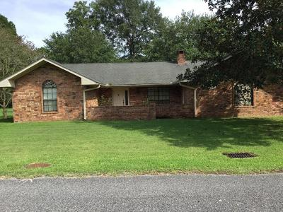 Breaux Bridge Single Family Home For Sale: 110 Sidonia Street