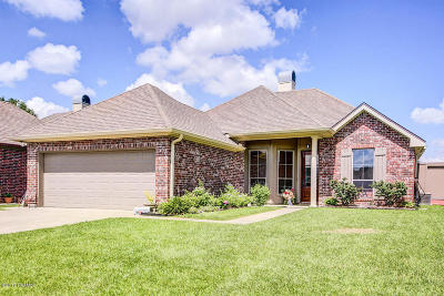 Youngsville Single Family Home For Sale: 103 Country Mile Drive