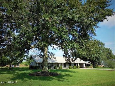 Jeanerette Single Family Home For Sale: 4304 Relius Ronsonet Drive