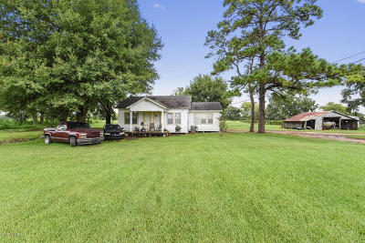 Duson Single Family Home For Sale: 1134 Duhon Road