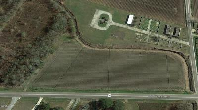 Farm For Sale: Burton Plantation Hwy