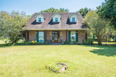 Breaux Bridge Single Family Home For Sale: 1124 Grand Anse Highway