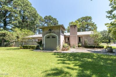 Lafayette Single Family Home For Sale: 807 E Bayou Parkway