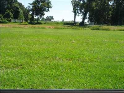 Iberia Parish Residential Lots & Land For Sale: 56 Hummingbird Lane