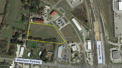 Commercial Lots & Land For Sale: 110 Sweetland