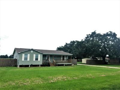 Rayne Single Family Home For Sale: 1532 La Hwy 700