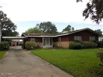 Iberia Parish Single Family Home For Sale: 427 S Iberia Street