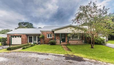 New Iberia Single Family Home For Sale: 617 Loreauville Road