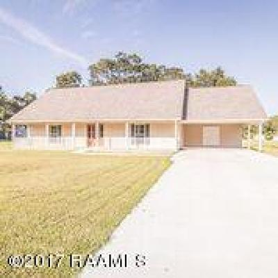New Iberia Single Family Home For Sale: 1004 Lopez Road
