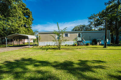Port Barre Single Family Home For Sale: 2894 Courtableu Road