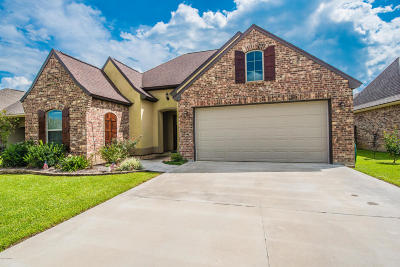 Highland Ridge Single Family Home For Sale: 206 Clay Ridge Drive