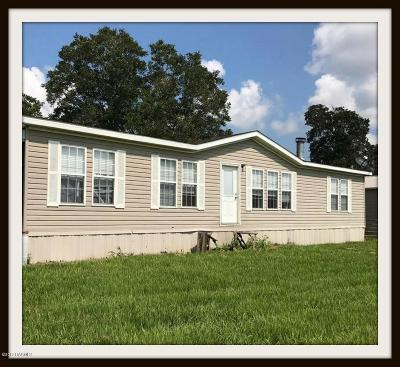 Port Barre Single Family Home For Sale: 16553 Us-190