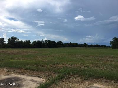 Evangeline Parish Farm For Sale: Tbd Us Hwy 167