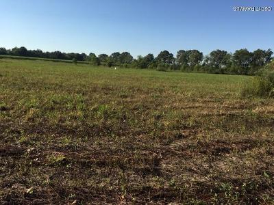 Residential Lots & Land For Sale: Lot 7-B Auguillard Road