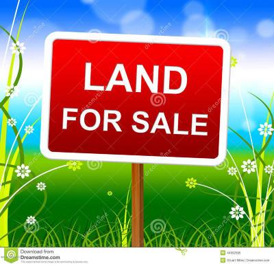 St Landry Parish Farm For Sale: Hwy 356