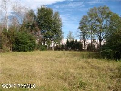 Lafayette Parish Commercial Lots & Land For Sale: 203 Fountainhead Drive