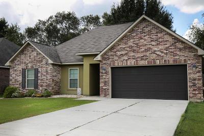 Carencro Single Family Home For Sale: 317 Magnolia Knee Drive