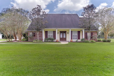 St Martinville, Breaux Bridge, Abbeville Single Family Home For Sale: 2903 Reno Road