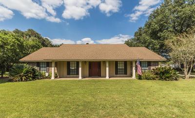 Opelousas Single Family Home For Sale: 217 St John Avenue