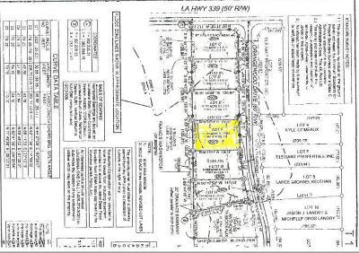 Vermilion Parish Residential Lots & Land For Sale: 2927 Orangewood Drive