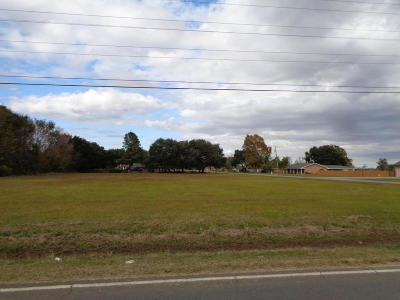 Evangeline Parish Residential Lots & Land For Sale: Tbd Belle Terre Drive