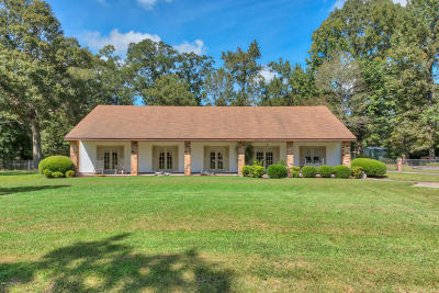 Carencro Single Family Home For Sale: 104 Froeba Drive