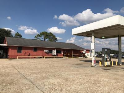 Vermilion Parish Commercial For Sale: 22240 S Highway 82