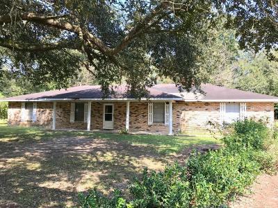 Leonville Single Family Home For Sale: 363 Hurvey Street