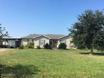 Basile Single Family Home For Sale: 1044 Necessity Loop