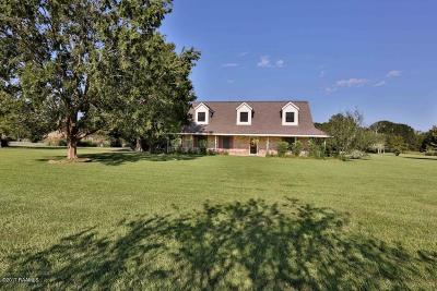 New Iberia Single Family Home For Sale: 1911 Somerset Street
