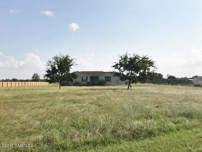 Sunset Single Family Home For Sale: 407 Pellerin Road