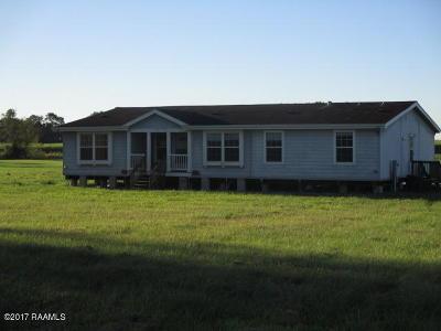 Vermilion Parish Single Family Home For Sale: 7905 Hillside Drive