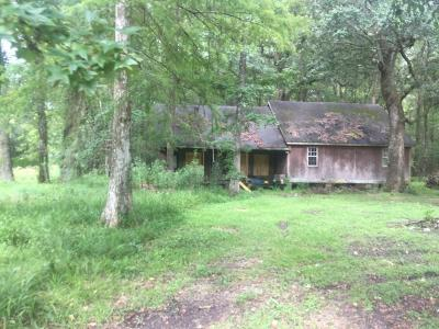 St. Martinville Single Family Home For Sale: 1653 Bayou Alexander