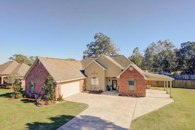 Breaux Bridge Single Family Home For Sale: 1008 Live Oak Circle