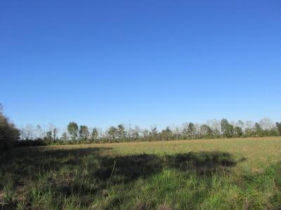 St Landry Parish Farm For Sale: Houston Richard