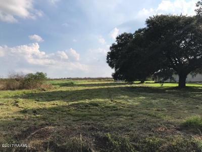 Vermilion Parish Residential Lots & Land For Sale: 10187 Placide