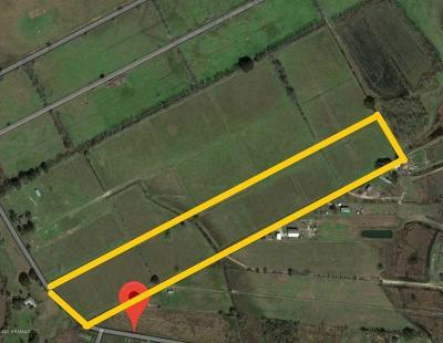 Vermilion Parish Farm For Sale: 1334 Boyance
