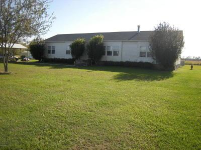 Rayne Single Family Home For Sale: 928 Charlie Arceneaux Road