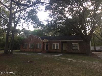 New Iberia Single Family Home For Sale: 900 Parkview Drive