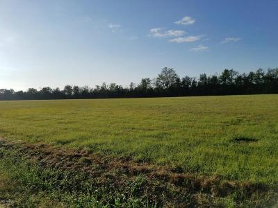 Vermilion Parish Farm For Sale: 4513 W Mack Switch Road