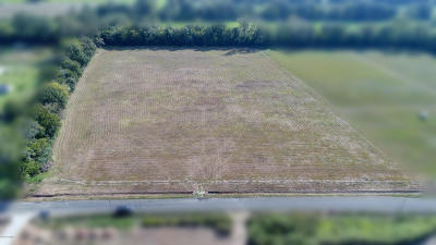 St Landry Parish Commercial Lots & Land For Sale: Tbd Old Spanish Road