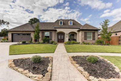Copper Meadows Phase Iv Single Family Home For Sale: 215 Quiet Oaks Drive