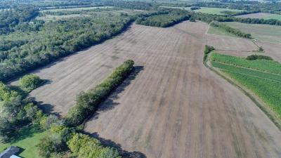 St Landry Parish Farm For Sale: Tbd Guillory Road