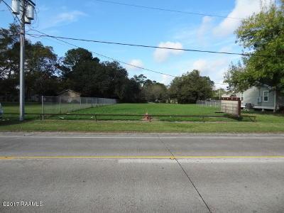 Vermilion Parish Commercial Lots & Land For Sale: 320 N John Hardy Drive