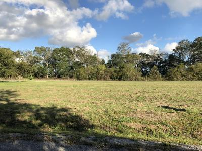 St Mary Parish Residential Lots & Land For Sale: 205 Sawmill Dr.